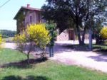 Ville in affitto umbria - CAMPAGNA - TORGIANO - PG